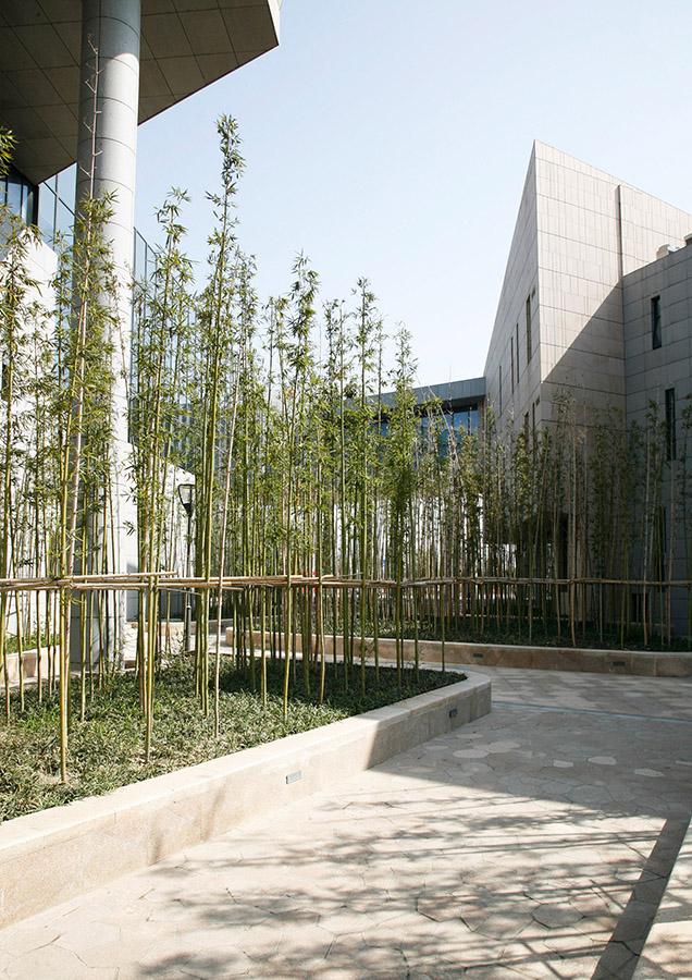 苏州张家港文化中心 (12)